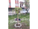 Ankara Çubuk Yıldırım Beyazıt Mah.